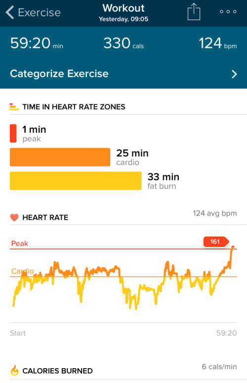Тренировка с FitBit