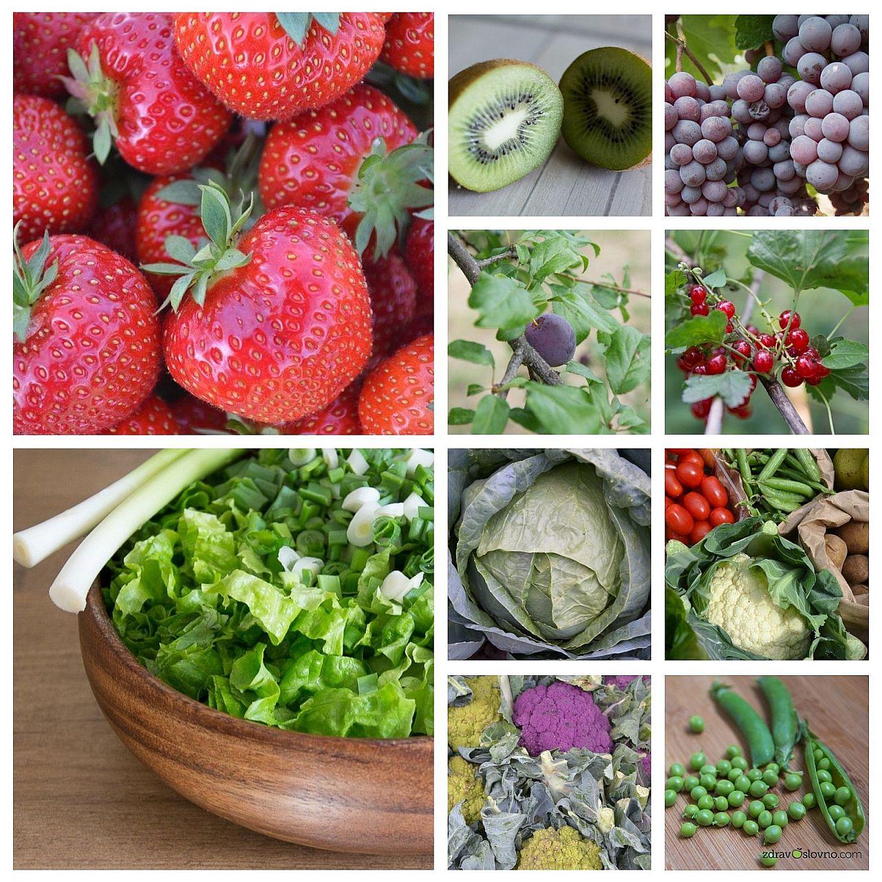 Плодовете и зеленчуците учат клетките ни да се пазят от болести