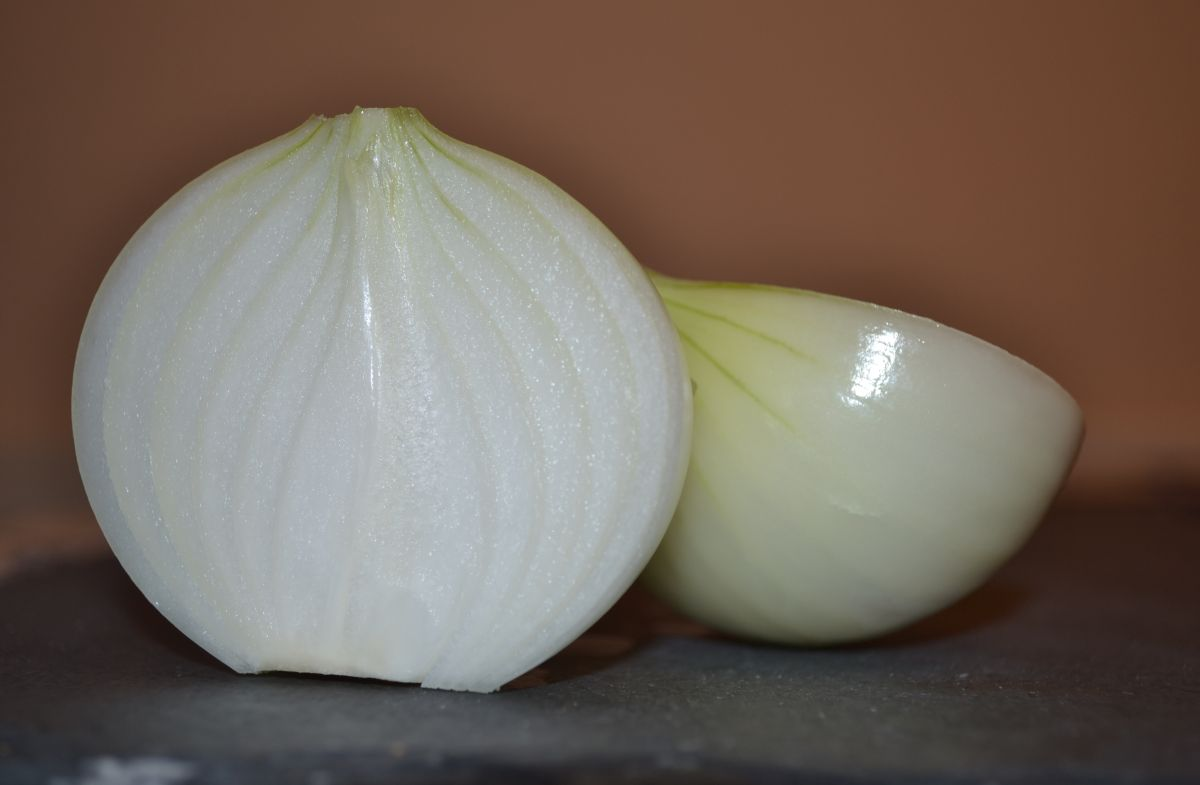Лук кромид