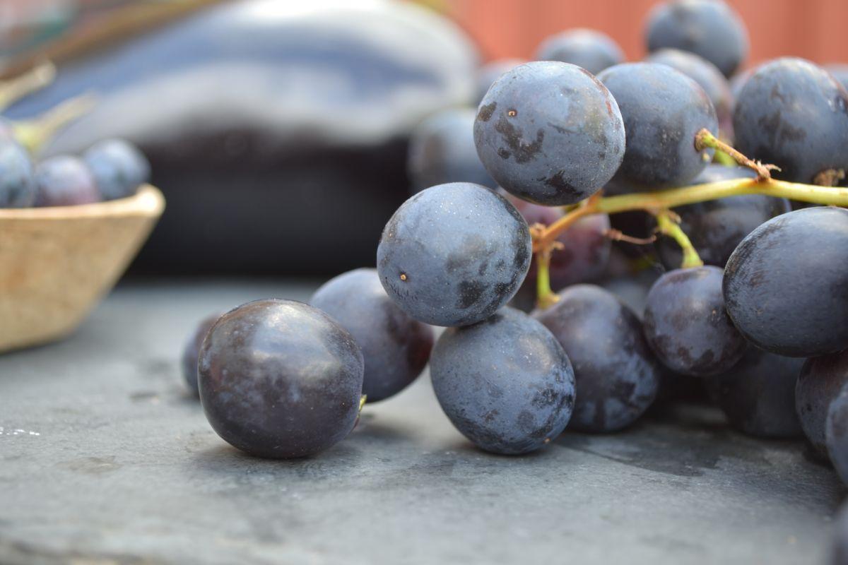 Лилави храни (плодове и зеленчуци)