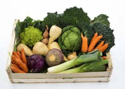 Сезонни храни през НОЕМВРИ