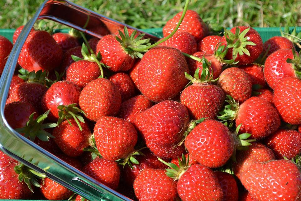Кои храни съдържат най-много пестициди?